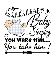 Baby Sayings - Baby sleeping you wake him you take him